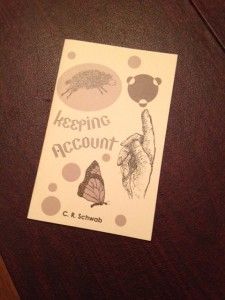 Keeping Account, by Charles R. Schwab